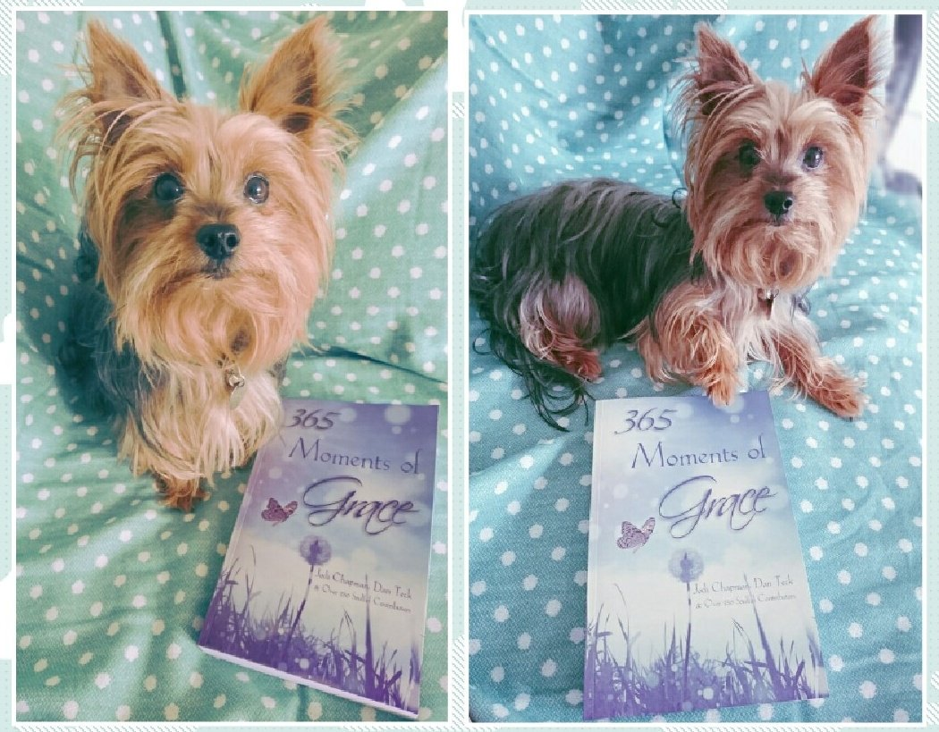 Get Your Paws On This Book!